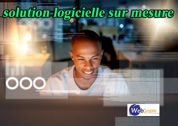 Une solution logicielle sur mesure, c'est quoi ? WEBGRAM, entreprise informatique basée à Dakar-Sénégal, leader en Afrique, ingénierie logicielle, développement de logiciels, systèmes informatiques, systèmes d'informations, développement d'applications web et mobile