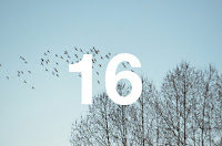 http://www.otchipotchi.com/2018/03/birds.html