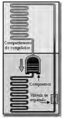 A figura apresentada ilustra o processo cíclico de funcionamento de uma geladeira, em que um gás no interior de uma tubulação é forçado a circular entre o congelador e a parte externa da geladeira.