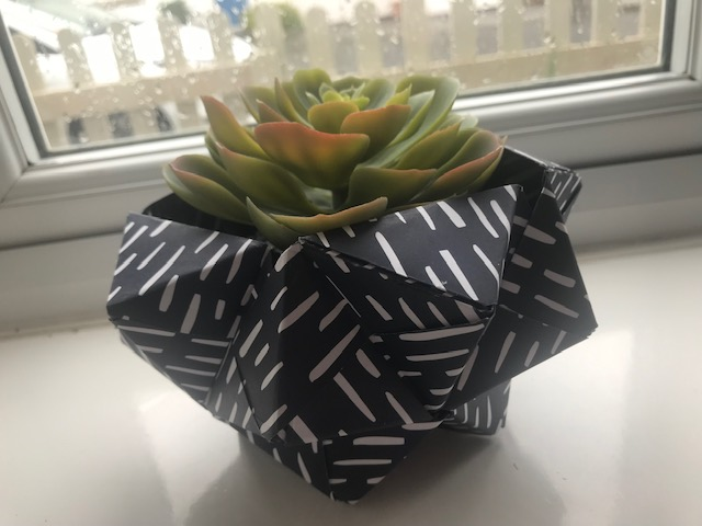 Orgiami, Craft, Hobby, Folding, Paper, Plant Pot, Succulent,