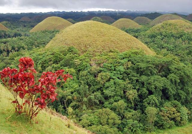 The Chocolate Hills, Philippines