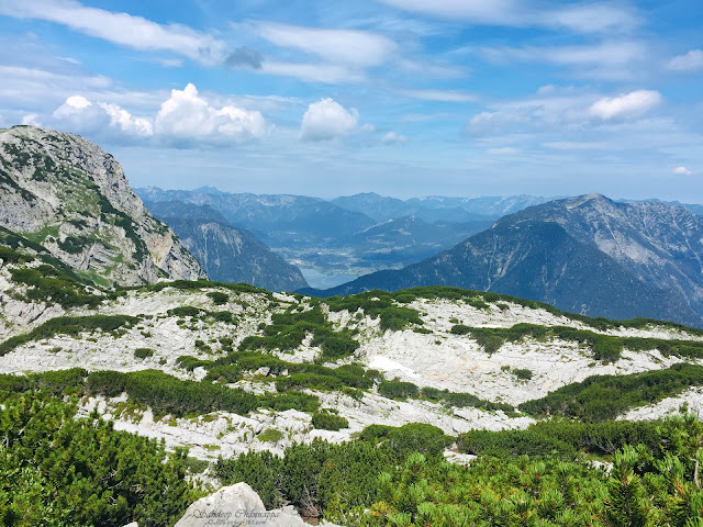 Valley view through the Dachstein shark trail