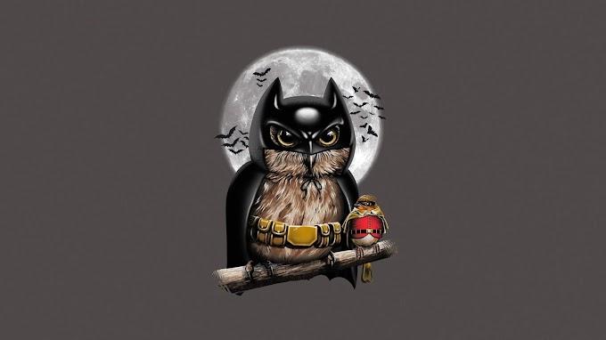 Papel de Parede Batman Coruja