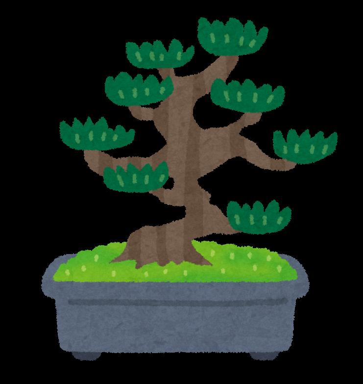 松の盆栽のイラスト かわいいフリー素材集 いらすとや