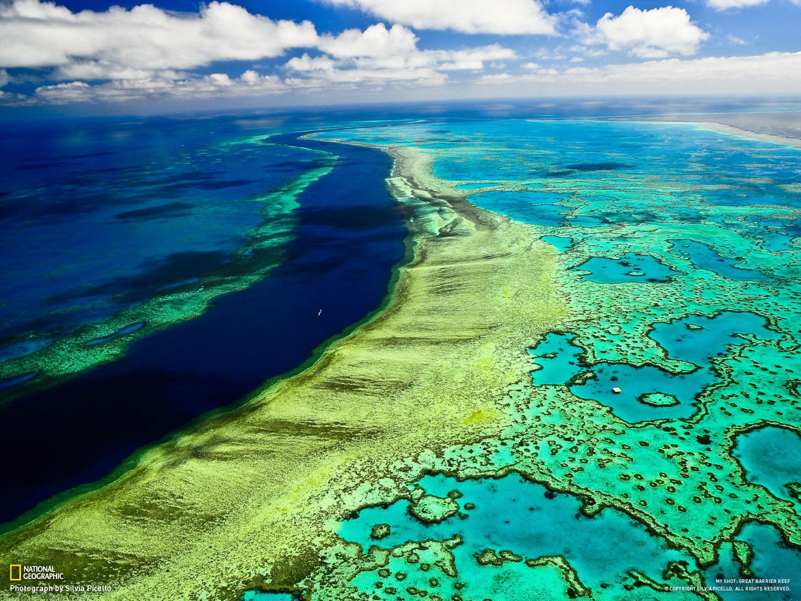 https://www.publico.pt/2018/04/29/ciencia/noticia/australia-vai-recuperar-a-grande-barreira-de-coral-1815735