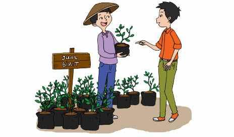 Penjual tanaman
