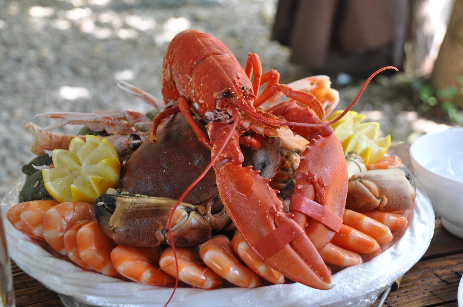Top 5 Seafood Recipes