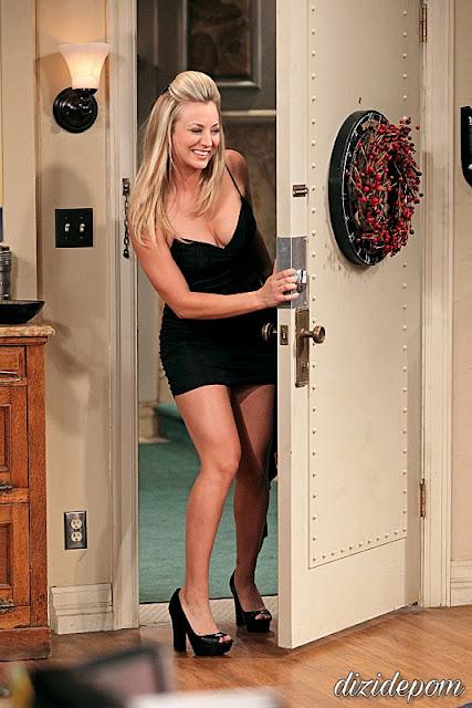 The Big Bang Theory Dizisi İndir