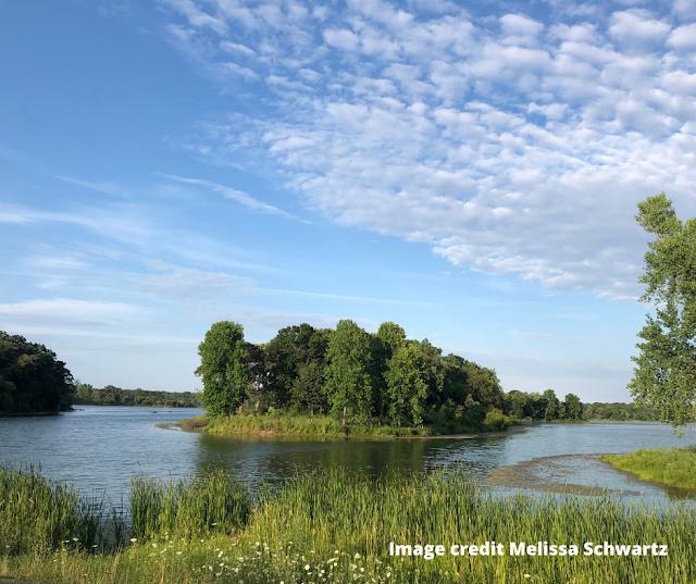 Summertime at Busse Lake! Image credit: Melissa Schwartz.
