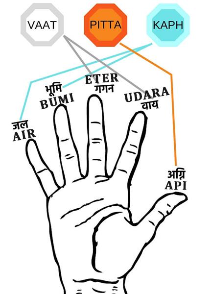 5 Elemen Prana