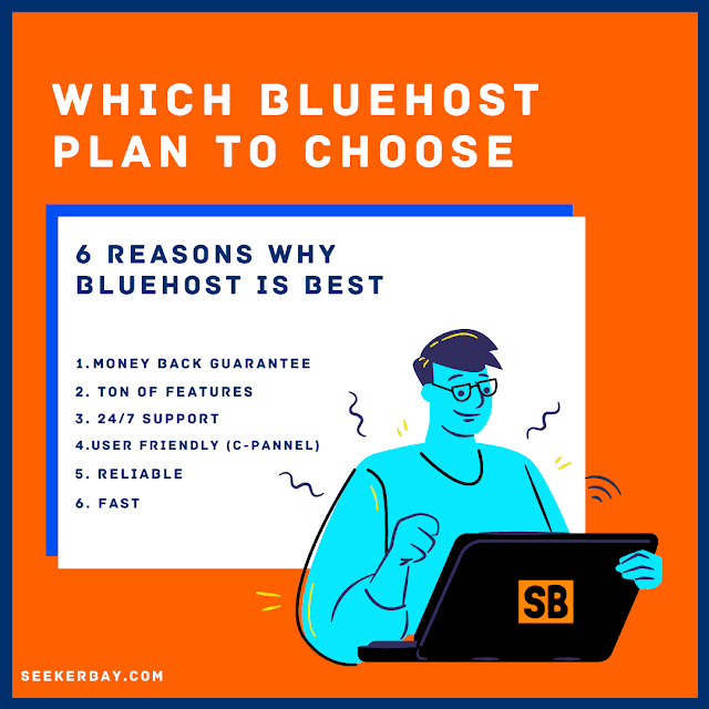 Why & Which Bluehost Plan Should You Choose In 2021