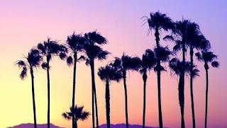 Le Reve Santa Barbara