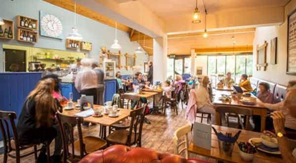 Ternyata Ini 10 Faktor Yang Membuat Cafe Banyak Pengunjung