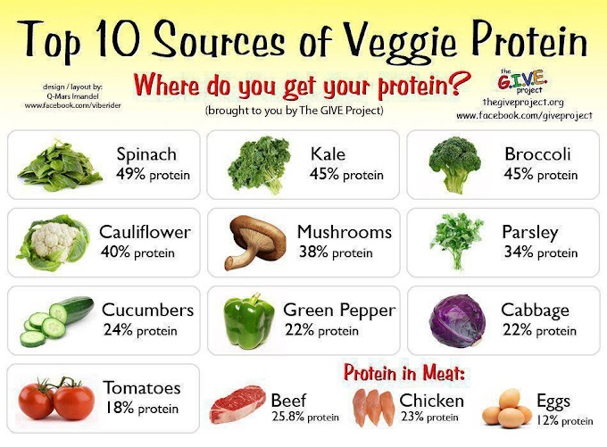 Protein Energy Sources