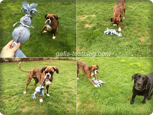 Amy und Deco mit dem Hundespielzeug - Jeansmännchen