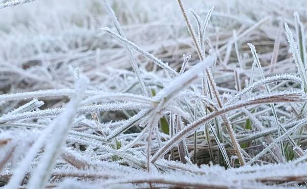 Vem muito frio por aí: Ciram alerta para temperatura abaixo de zero, chegando a -5ºC em SC