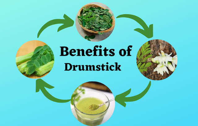 Benefits of drumstick