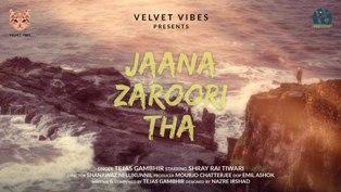 Jaana Zaroori Tha Lyrics - Tejas Gambhir