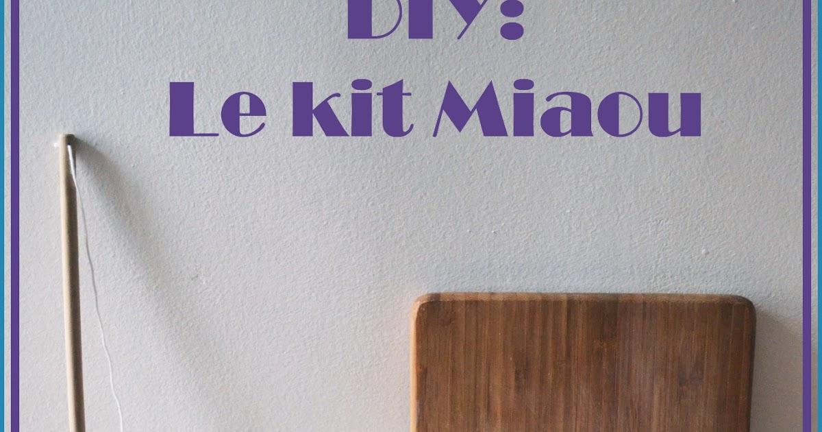 funky sunday des accessoires pour le chat diy. Black Bedroom Furniture Sets. Home Design Ideas