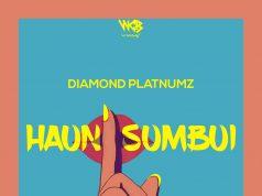 AUDIO | Diamond Platnumz – Haunisumbui | Download new mp3