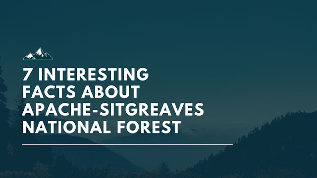 7 Interesting Facts About Apache-Sitgreaves National Forest