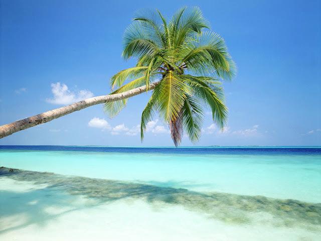Free Desktop Wallpaper: Beach Wallpaper