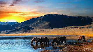 arte-en-imágenes-digitales-paisajes-atardeceres-andinos fotografías-atardeceres-andinos-arte