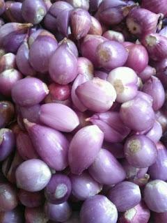 cara menyimpan bawang putih,bahaya bawang merah kupas,cara menyimpan bawang merah giling,cara menyimpan cabe,cara menyimpan bawang merah untuk bibit,tempat menyimpan bawang,cara menyimpan bumbu halus,menyimpan bawang putih di kulkas