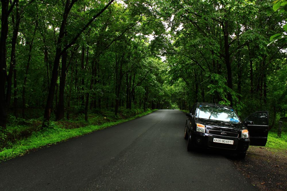 Monsoon Drive
