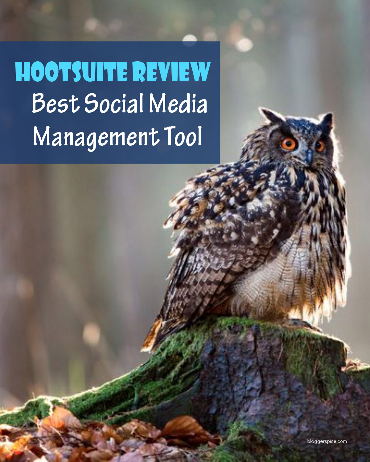 Hootsuite the Most popular Social Media Management and Analytic Tool on the Market