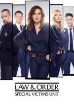 Ley y orden U.V.E. Temporada 22 audio español