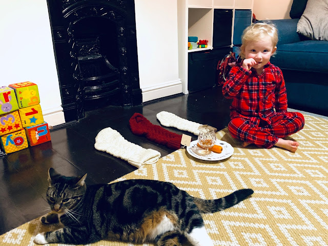 A 3 year old in PJs and a cat sitting next to 3 stockings and a plate with treats for Father Christmas