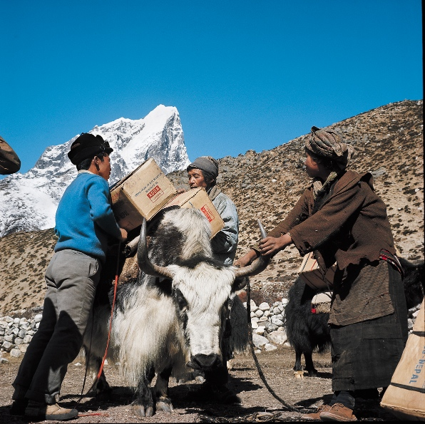 La Terra Degli Sherpa.Con Gli Sherpa Sul Tetto Del Mondo Camera Con Vista