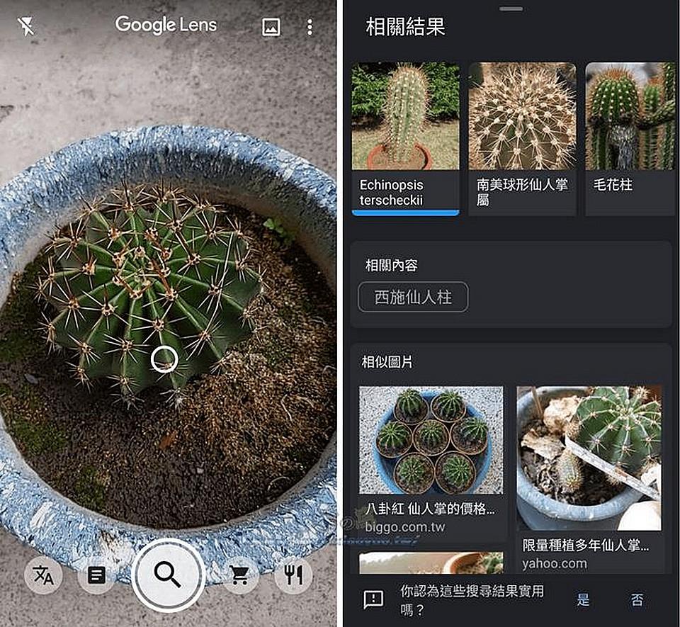 Google Lens 透過鏡頭準確辨識各種內容