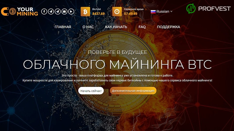 Your Mining обзор и отзывы HYIP-проекта