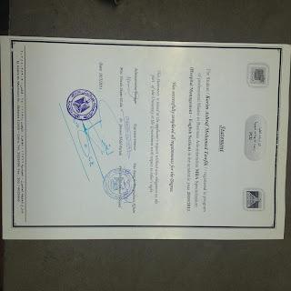 M.B.A. Hospital Management Certificate - Ain Shams University , Cairo - Egypt