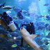 Kembali Dibuka, Berikut Harga Tiket Sea World September 2020