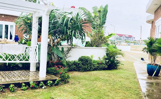 Xung quanh biệt thự, hoa và cây cảnh được trồng nhiều