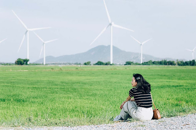 Ninh Thuận và những cánh đồng điện gió đẹp tựa trời Tây