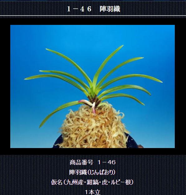 http://www.fuuran.jp/1-46html