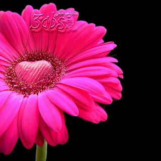 صور الحب جميلة جدا وصور الغرام والرومنسية