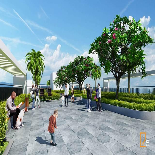 Vườn dạo bộ trên cao đầu tiên tại Ecolife Quy Nhơn
