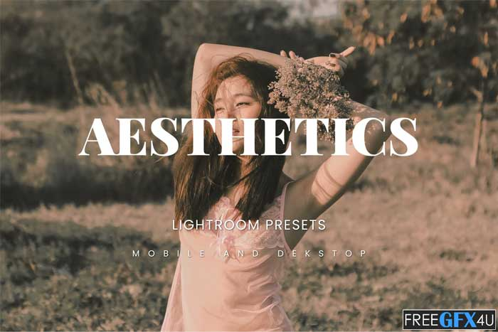Aesthetics Lightroom Presets