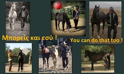 http://mit-pferden-im-hier-und-jetzt.blogspot.gr/