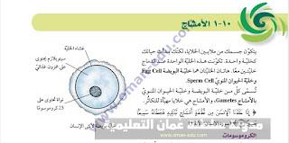 10-1 الأمشاج وعملية الإخصاب في الإنسان / للصف الثامن