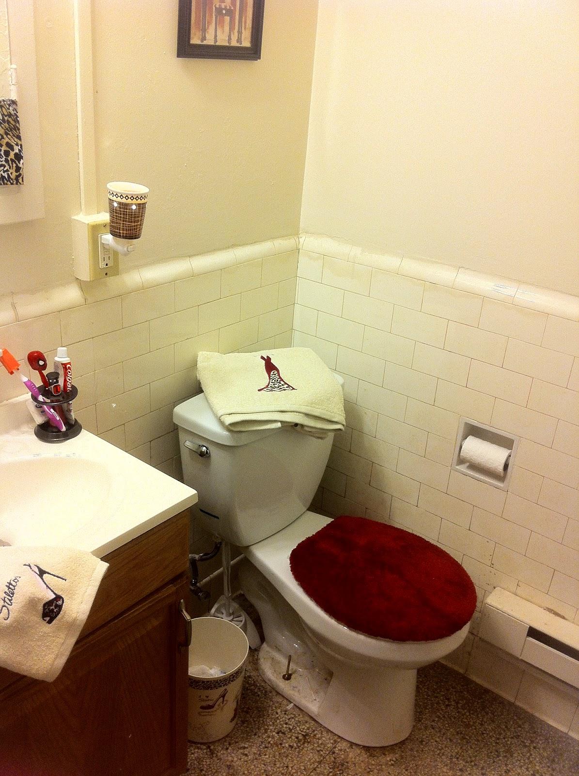 Midwest Fashionista Bathroom Re Vamping