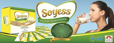SOYESS HWI