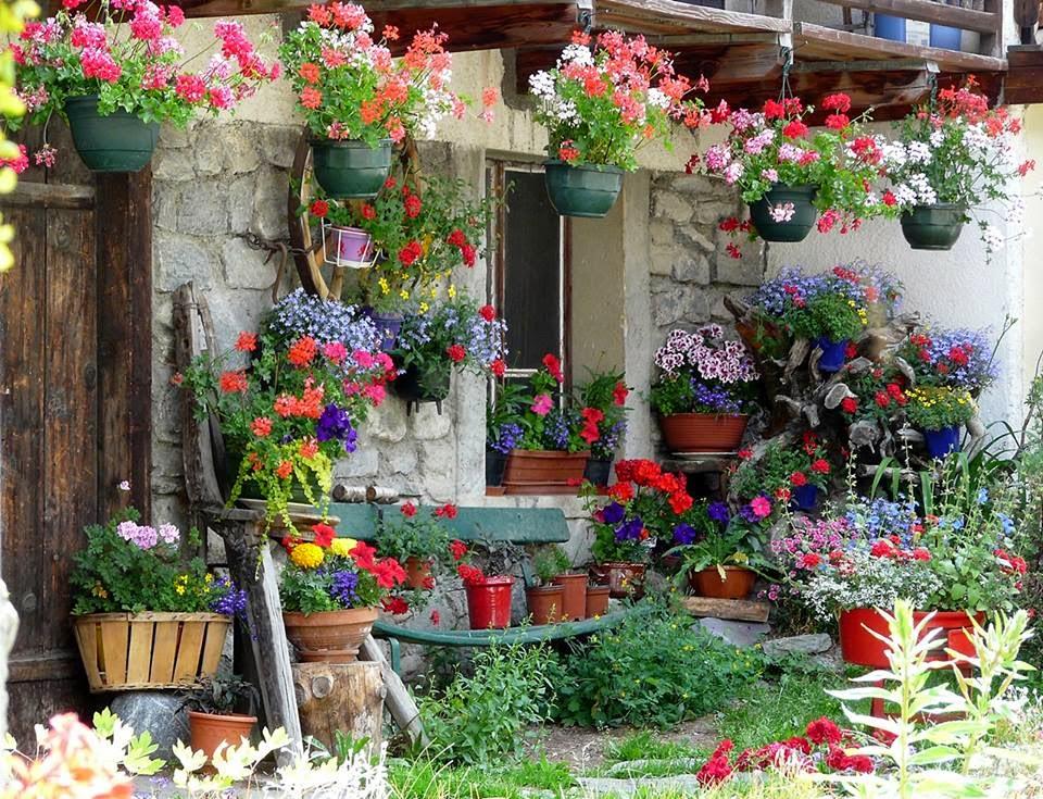 mon jardin fleuri maison fleuri. Black Bedroom Furniture Sets. Home Design Ideas