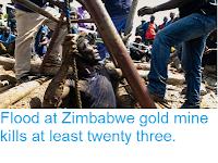 https://sciencythoughts.blogspot.com/2019/02/flood-at-zimbabwe-gold-mine-kills-at.html