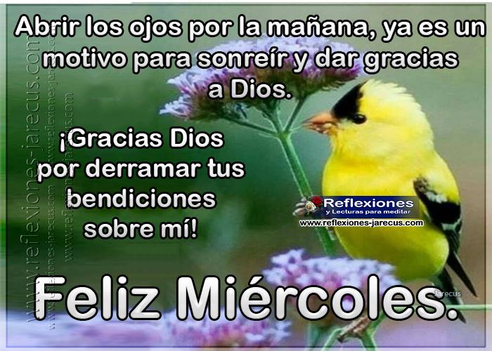 Feliz miércoles, abrir los ojos por la mañana, ya es un motivo para sonreír y dar gracias a Dios. Gracias por derramar tus bendiciones sobre mi.